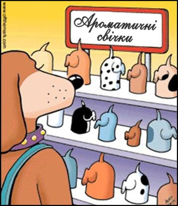 Ароматичні свічки для собак