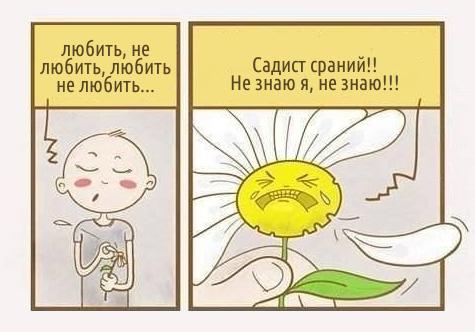 Любить, не любить