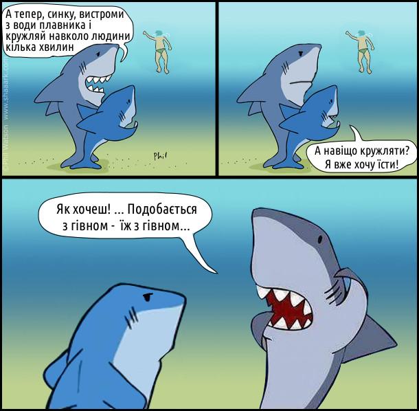 Комікс про акул. Пливуть акули, бачать чоловік пливе. - А тепер, синку, вистроми з води плавника і кружляй навколо людини кілька хвилин. - А навіщо кружляти? Я вже хочу їсти! - Як хочеш! ... Подобається з гівном - їж з гівном...