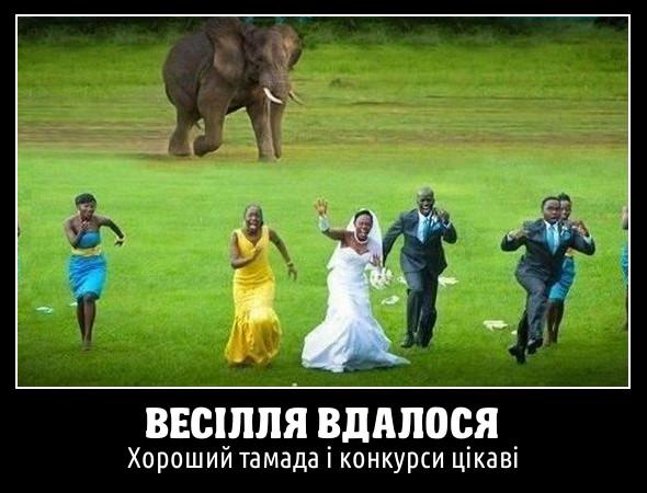 Весілля вдалося