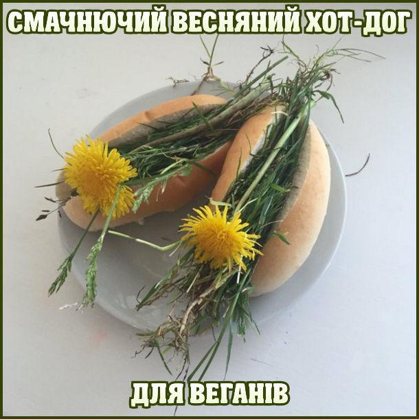 Гумор про вегетаріанців
