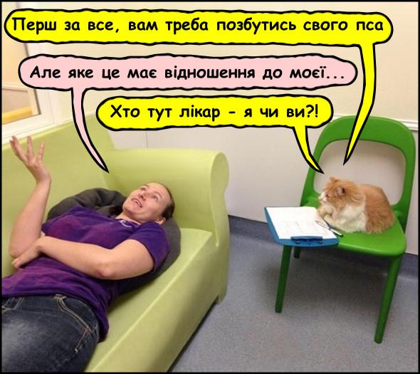 Прикол: Сеанс психоаналізу. Жінка лежить на канапі, поряд сидить кін, неначе на сеансі психоаналізу. Кіт: - Перш за все, вам треба позбутись свого пса. Жінка: - Але яке це має відношення до моєї... Кіт: - Хто тут лікар - я чи ви?!