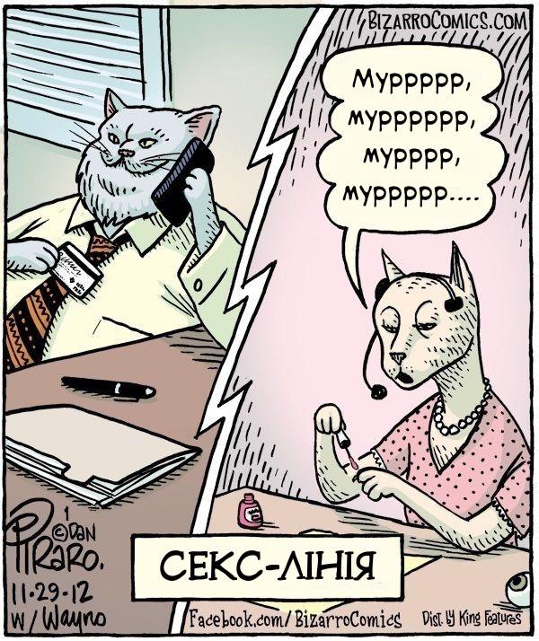Секс по телефону в котів