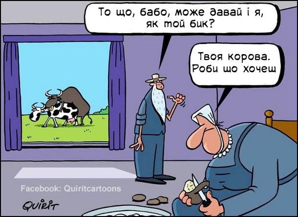 Карикатура про бабу й діда