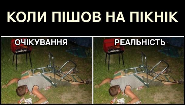 Коли пішов на пікнік. Очікування і реальність. В обох випадках п'яний спиш в траві
