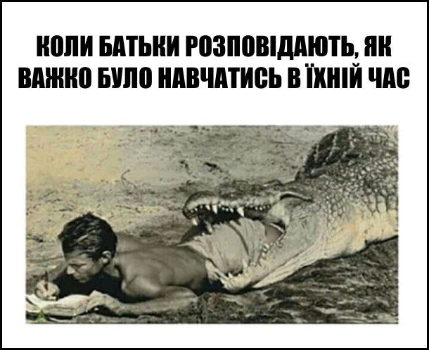 """Мем """"От в наші часи..."""". Коли батьки розповідають, як було важко навчатись в їхній час. На фото: чоловік наполовину в пащі алігатора, але продовжує писати"""