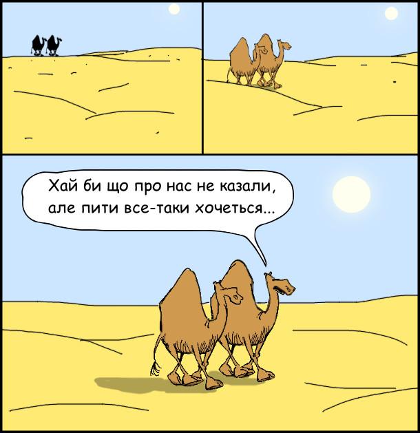 Йдуть пустелею двоє верблюдів. - Хай би що про нас не казали, але пити все-таки хочеться...