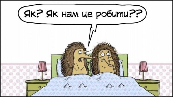 Прикол Секс в їжаків. Подружня пара їжаків лежать в ліжку. Всі в обколоті голками. Їжак: - Як? Як нам це робити??