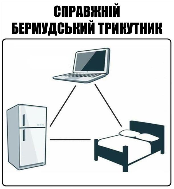 Справжній бермудський трикутник - комп'ютер, ліжко, холодильник