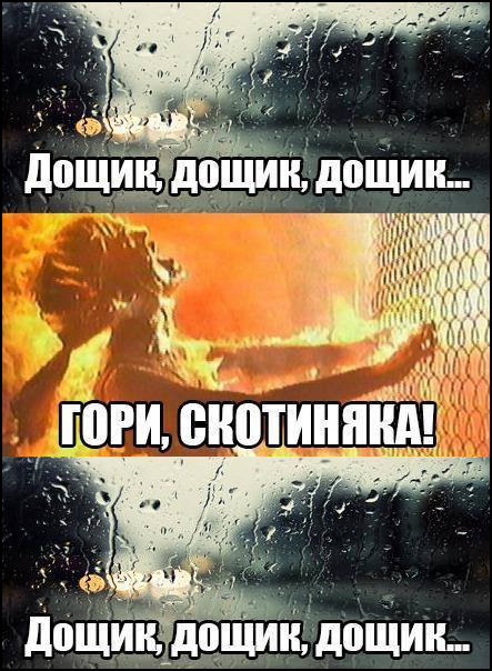 Мем Погода влітку. Дощик, дощик... Гори скотиняка! (кадр з Термінатора), Дощик, дощик...