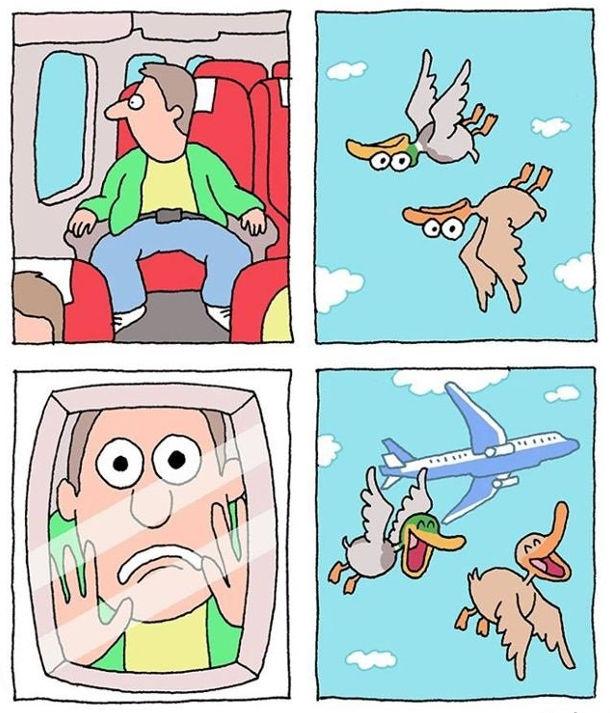 Пасажир в літаку глянув в ілюмінатор і побачив, що дві качки летять догори дригом. Пасажир в шоці. А це просто качки його розіграли