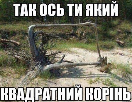 Так ось ти який, квадратний корінь. На фото: квадратний корінь якогось дерева
