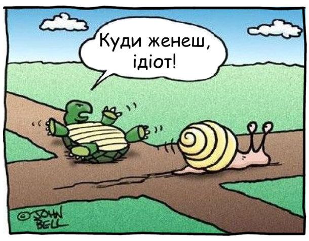 На перехресті черепаха до равлика: - Куди женеш, ідіот!