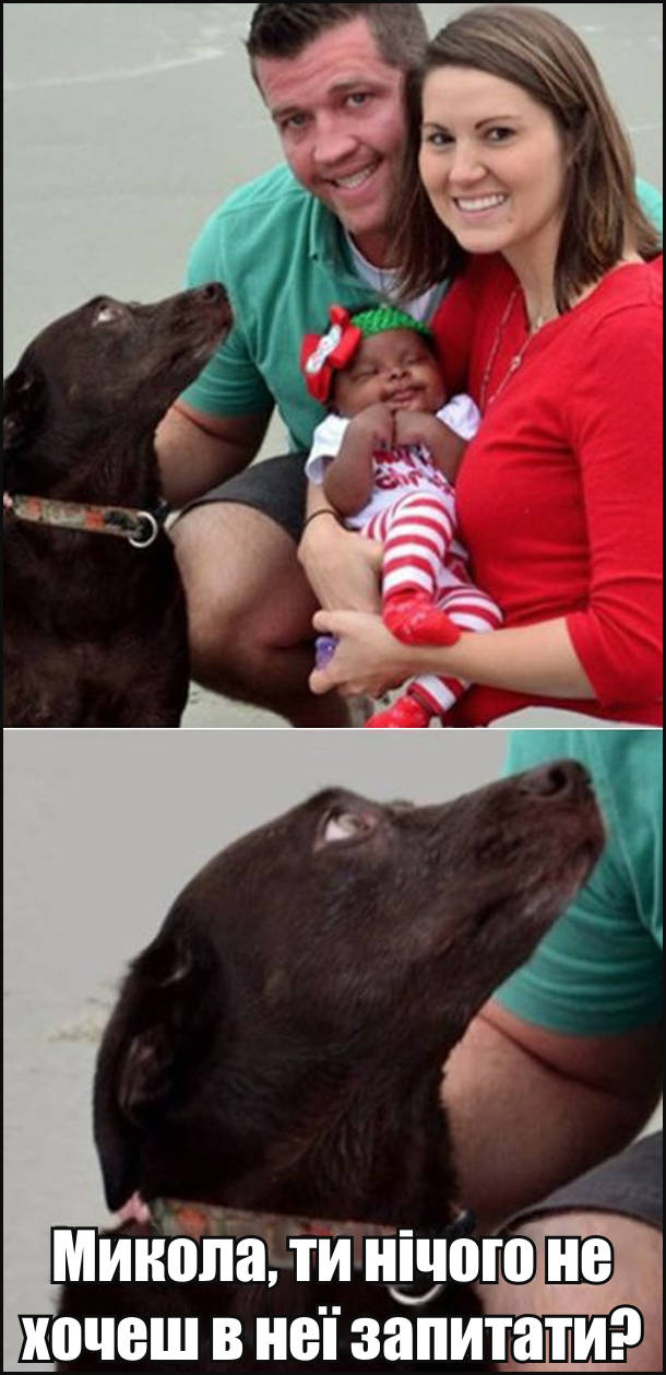 Сімейне фото: батько, мама, новонароджена дитина і пес. Батьки білі, а дитина чорношкіра. Пес поглядає на батька: - Микола, ти нічого не хочеш в неї запитати?