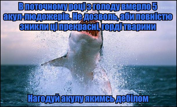 В поточному році з голоду вмерло 5 акул-людожерів. Не дозволь, аби повністю зникли ці прекрасні, горді тварини - нагодуй акулу якимсь дебілом