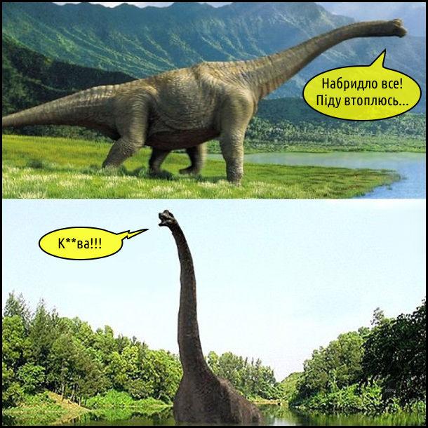 Брахіозавр: - Набридло все! Піду втоплюсь... Заліз в річку, а вона йому по коліна. - Курва!!!