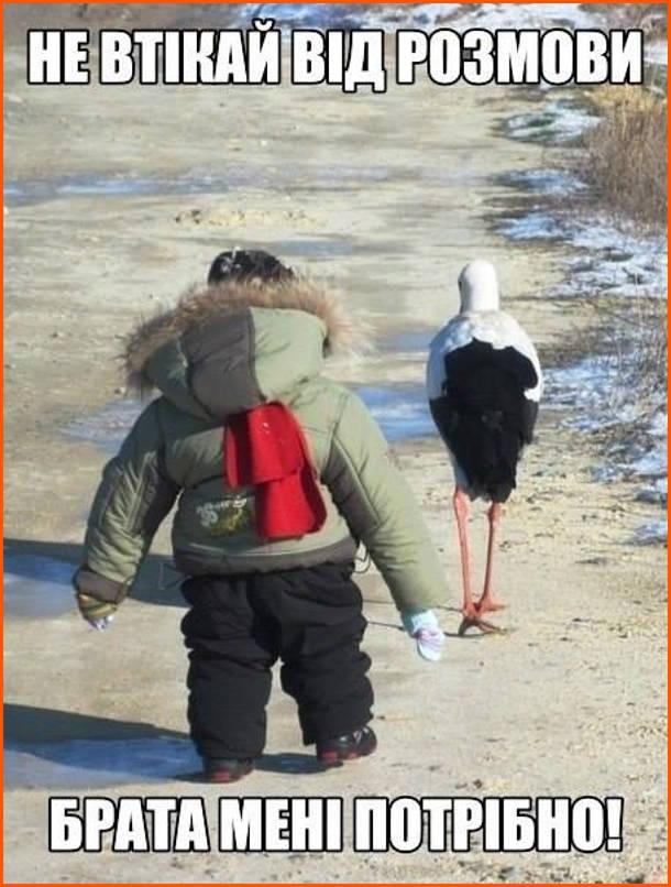 Малюк йде за лелекою і гукає: - Не втікай від розмови. Брата мені потрібно!