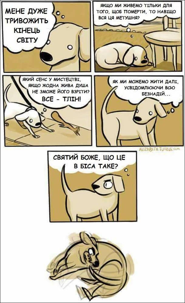 Собака думає: Мене дуже тривожить кінець світу. Якщо ми живемо тільки для того, щоб померти, то навіщо вся ця метушня? Який сенс у мистецтві, якщо жодна жива душа не може його взріти? Все - тлін! Як ми можемо жити далі усвідомлюючи всю безнадій... І тут пес побачив свого хвоста: Святий Боже, що це таке? І почав бігати за своїм хвостом