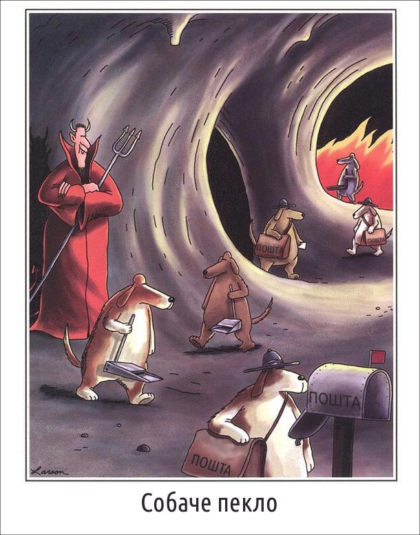Собаче пекло. Одні собаки ходять і прибирають какашки, а інші розносять пошту