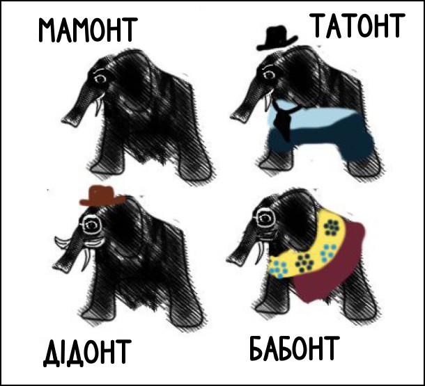 Мамонт, татонт, дідонт, бабонт