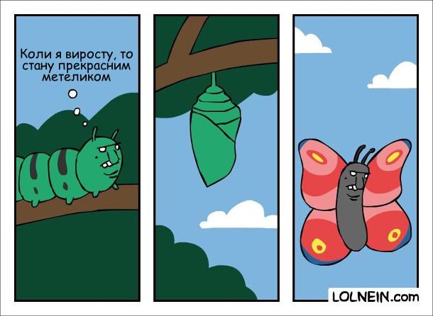 Гумінь з бридкою пикою повзе і думає: - Коли я виросту, то стану прекрасним метеликом. Стала вона лялечкою, а потім метеликом. З такою ж бридкою пикою