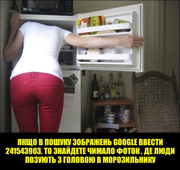 Якщо в пошуку зображень Google ввести 241543903, то знайдете чимало фоток, де люди позують з головою в морозильнику