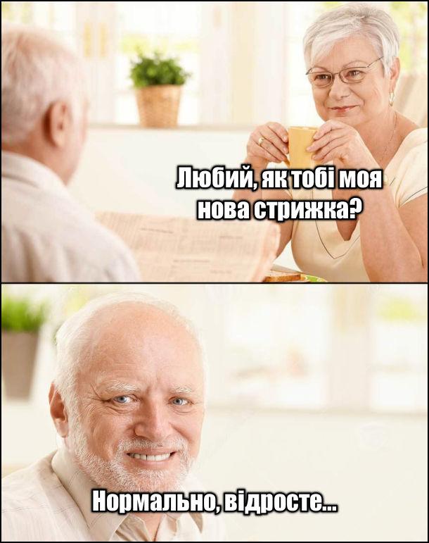 Мем з Гарольдом. Дружина: - Як тобі моя нова стрижка? Гарольд: - Нормально, відросте...