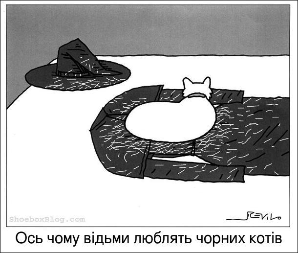 Білий кіт лежить на чорному одязі відьми і розкидав там білу шерсть. Ось чому відьми люблять чорних котів