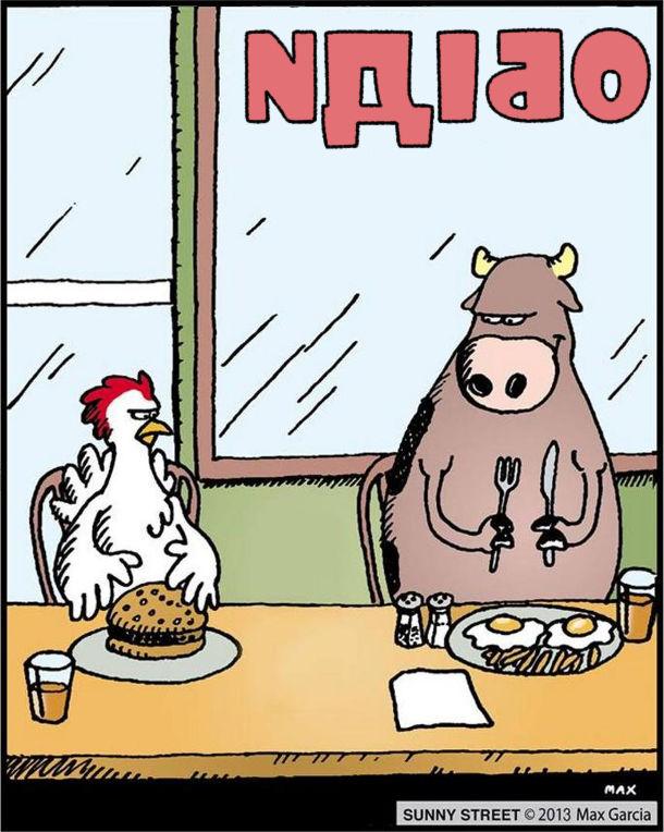 """Серія карикатур Sunny Street від Макса Гарсіа. В ресторанчику """"Обіди"""" за стійкою сидять бик (чи корова) і півень (чи курка). Півень замовив гамбургер з яловичиною, а бик - яєшню. І мстиво поглядають один на одного"""