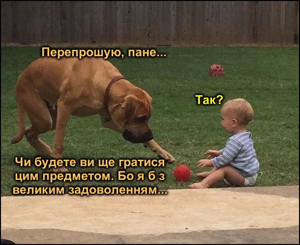Малбк грається м'ячиком. До нього підгодить пес і тягне лапу до м'яча. - Перепрошую, пане... - Так? - Чи будете ви ще гратися цим предметом. Бо я б з великим задоволенням...