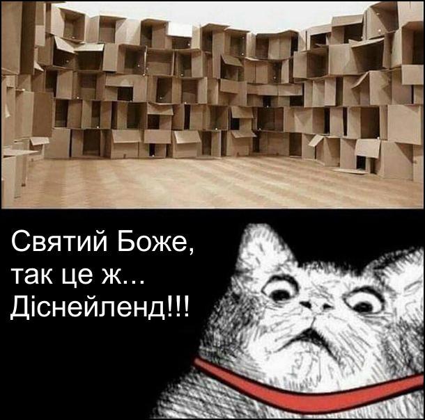 В кімнаті лежить величезна кількість картонних коробок. Кіт це побачив і вигукнув: - Святий Боже, так це ж... Діснейленд!!! Мем про кота