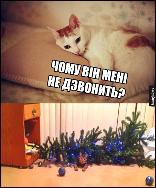 Кицька лежить і думає: Чому він мені не дзвонить? А в цей час кіт звалив новорічну ялинку і вона на нього впала