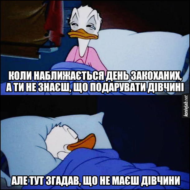 Прикол про день Закоханих. Дональд Дак прокинувся посеред ночі. Коли наближається день закоханих, а ти не знаєш, що подарувати дівчині, але тут згадав, що не маєш дівчини. І споуійно собі заснув