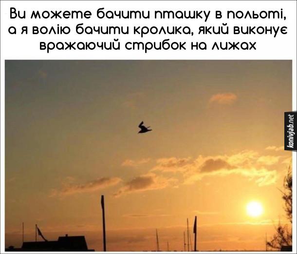 Смішне фото в небі. Ви можете бачити пташку в польоті, а я волію бачити кролика, який виконує вражаючий стрибок на лижах