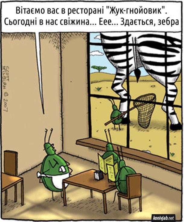 """Смішний малюнок про жуків. Жуки в ресторані. До них підходить шеф-кухар: - Вітаємо вас в ресторані """"Жук-гнойовик"""". Сьогодні в нас свіжина... Еее... Здається, зебра"""