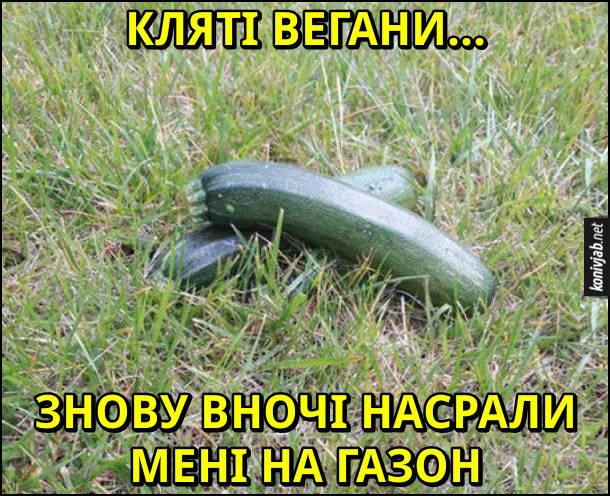Прикол. Кляті вегани... Знову вночі насрали мені на газон. На траві лежать кабачки