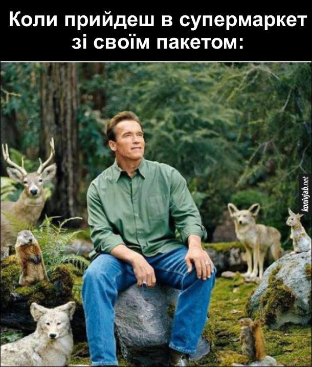 Жарт про захист природи. Це відчуття, коли прийдеш в супермаркет зі своїм пакетом і сприяєш екології. Арнольд Шварценеггер сидить на камінці в лісі і поряд нього дикі тварини.