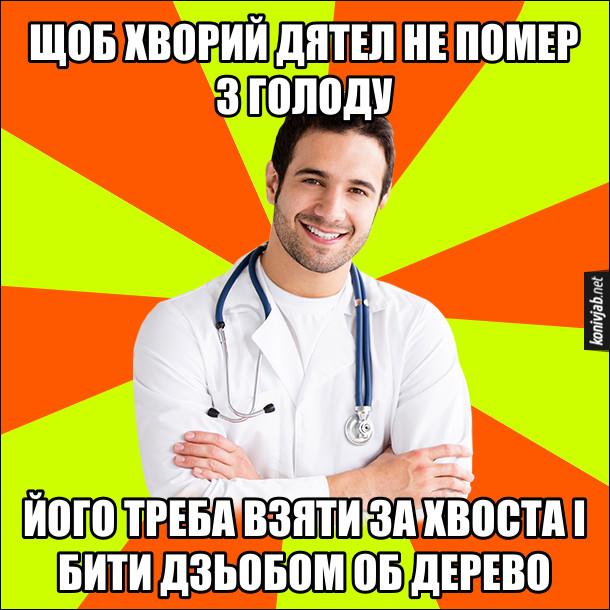 Анекдот, мем про дятла. Щоб хворий дятел не помер з голоду, його треба взяти за хвоста і бити дзьобом об дерево