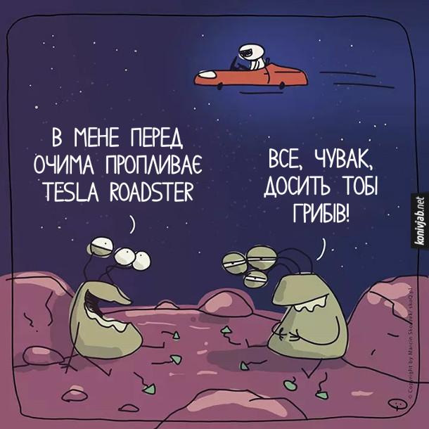 Прикол про Tesla Rodster. Десь в космосі на якійсь планеті, чи кометі сидять два іншопланетянина і їдять галюциногенні гриби. В небі над ними пролітає автомобіль Тесла. Один іншопланетянин поглянув в небо і каже: - В мене перед очима пропливає Tesla Roadster. Інший каже: - Все, чувак, досить тобі грибів!