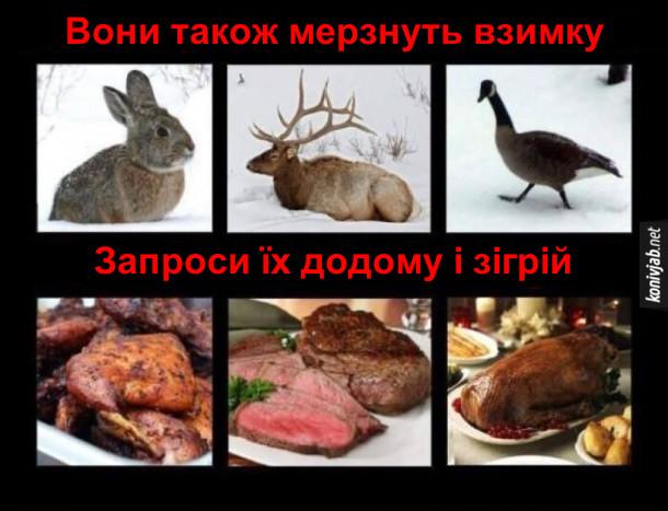 Чорний гумор про тварин. Заєць, олень, качка - вони також мерзнуть взимку. Запроси їх додому і зігрій - зроби страви із зайчатини, оленини і качатини