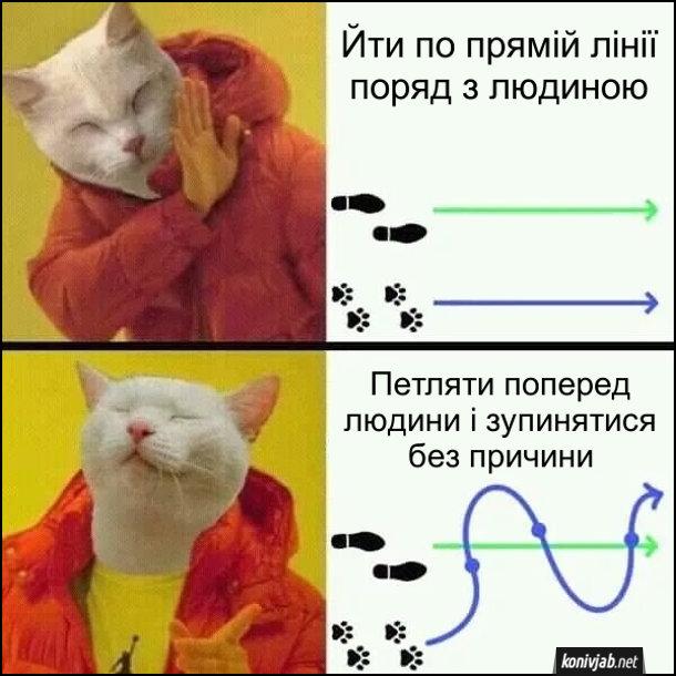 Сміх про кота. Мем з Дрейком, але замість Дрейка кіт. Йти по прямій лінії поряд з людиною - ні. Петляти поперед людини і зупинятися без причини - так.