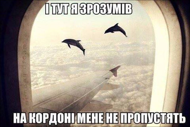 Жарт про галюни. Подивився в ілюмінатор літака, а там, біля крила літака літають дельфіни. І тут я зрозумів - на кордон мене не пропустять