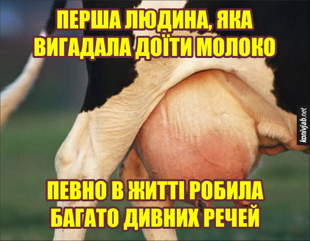 Жарт Хто вигадав доїти молоко. Перша людина, яка вигадала доїти молоко, певно в житті робила багато дивних речей