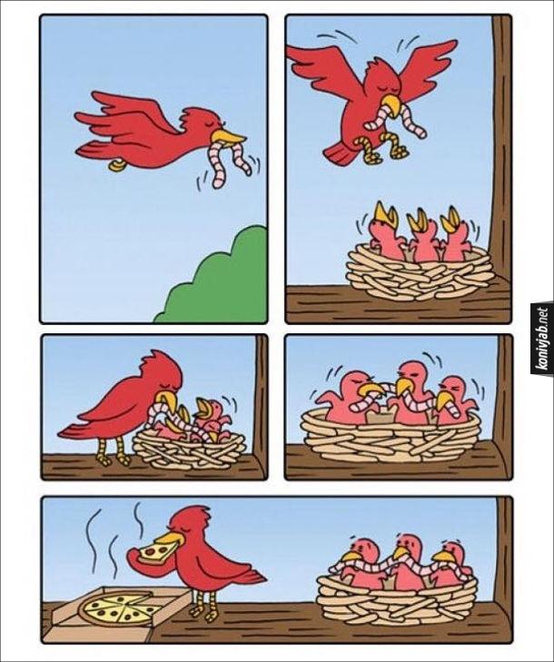 Смішний комікс: Мама пташка годує пташенят. Прилетіла до гнізна з діточками і дає їм черв'яка, а сама їсть піцу