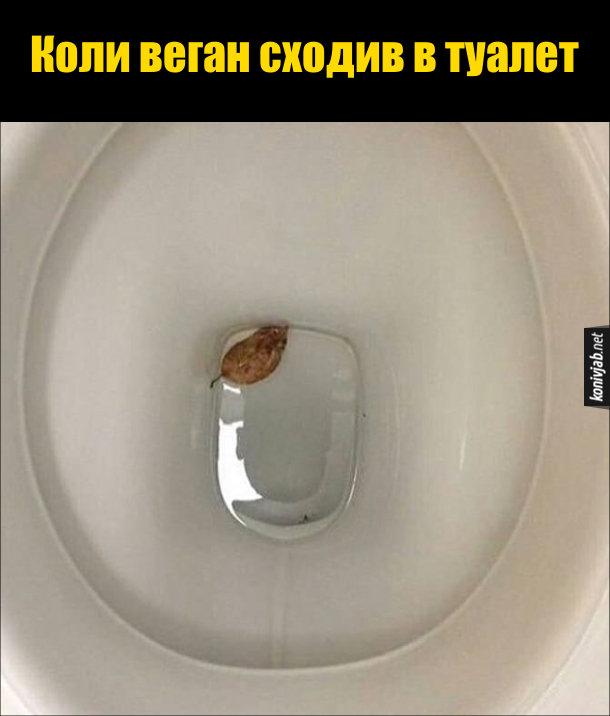 Жарт про вегана. Коли веган сходив в туалет - в унітазі плаває листок. Типу вегани скруть листям
