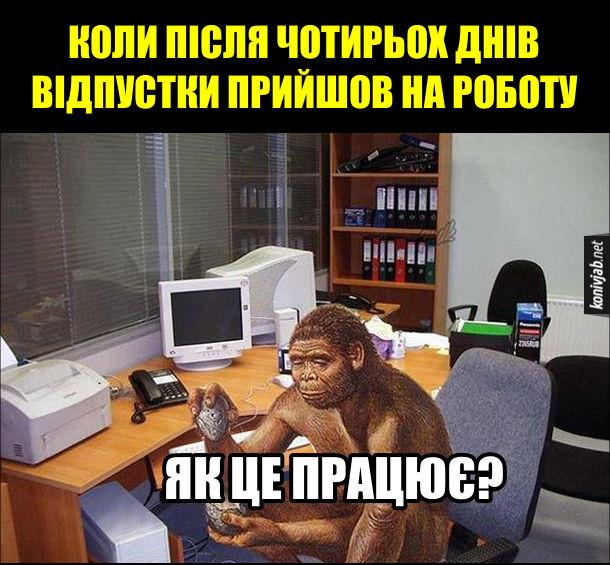 Після відпустки Прикол. Коли після чотирьох днів відпустки прийшов на роботу - сидиш в кабінеті перед компом і відчуваєш себе як доісторична мавпоподібна людина і кажеш: - Як це працює?