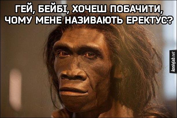 Гумор про первісну людину. Homo erectus: - Гей, бейбі, хочеш побачити, чому мене називають еректус?