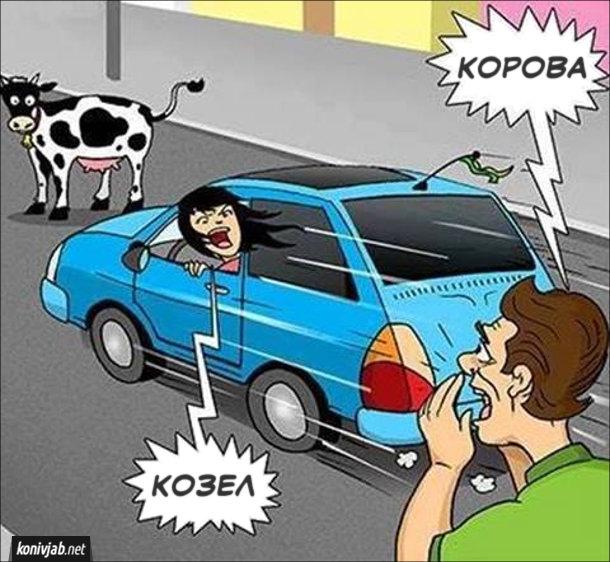 Прикол Дівчина за кермом. Дівчина (жінка) їде на машині і на дивиться на дорогу, де стоїть корова. Якийсь чоловік хоче пропередити жінку і кричить: - Корова. Жінка сприйняла це на власний рахунок і крикнула йому: - Козел