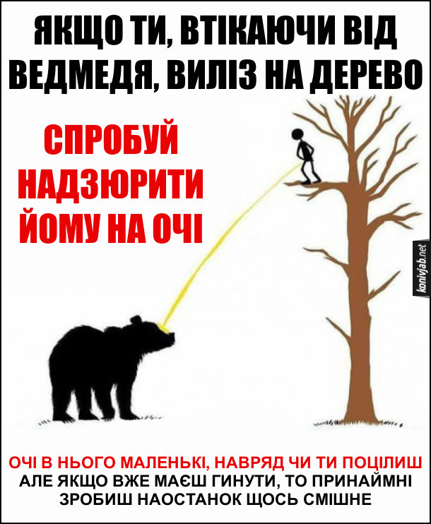 Прикол Як поводитись при зустрічі з ведмедем. Якщо ти, втікаючи від ведмедя, виліз на дерево, спробуй надзюрити йому на очі. Очі в нього маленькі, навряд чи ти влучиш, але якщо вже маєш гинути, то принаймні зробиш наостанок щось смішне
