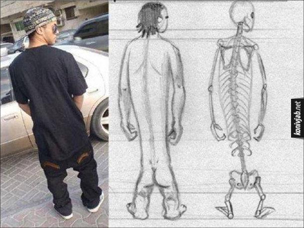 Штани з низькою матнею. Хлопець в таких штанах і як би він виглядав без одягу і його скелет. Який в нього видовжений тулуб і куці ноги